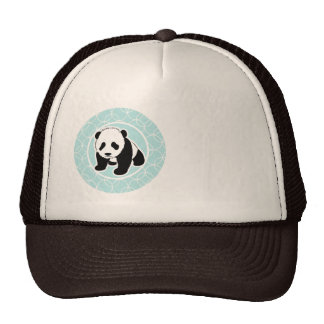 Cute Panda on Baby Blue Circles Hats