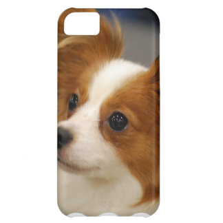 Cute Papillon Dog Case For iPhone 5C