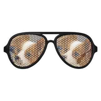 Cute Papillon Dog Aviator Sunglasses