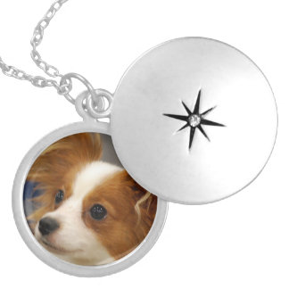 Cute Papillon Dog Necklace