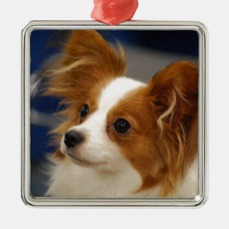 Cute Papillon Dog Silver-Colored Square Decoration