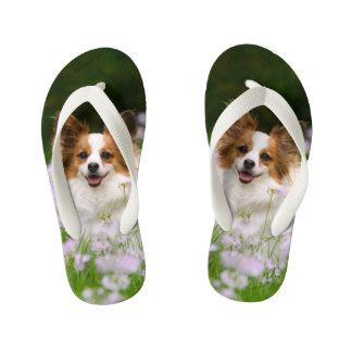 Cute Papillon Spaniel Head Photo for Dog Lovers -- Flip Flops