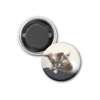 Cute Papillons 3 Cm Round Magnet
