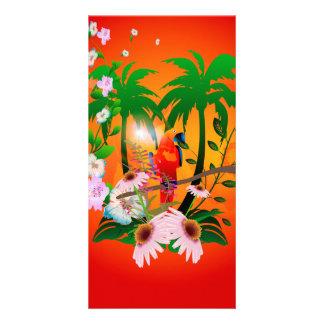 Cute parrot custom photo card