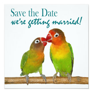 Cute Parrot Love Birds Tropical Save the Date Custom Announcements