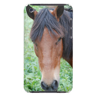 Cute Paso Fino Horse iTouch Case Barely There iPod Cover