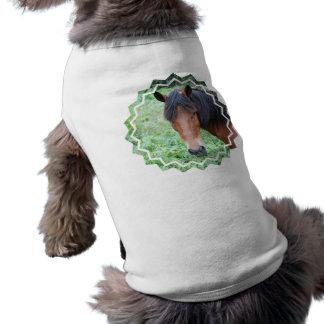 Cute Paso Fino Pet Shirt