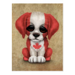 Cute Patriotic Canadian Flag Puppy Dog, Rough Post Card