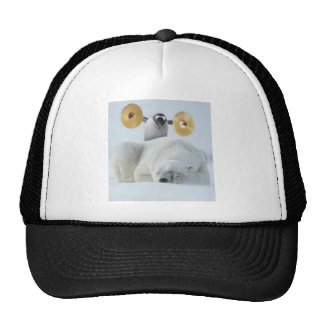 Cute penguin and polar bear with cymbals in snow cap