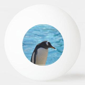 Cute Penguin Ping-Pong Ball