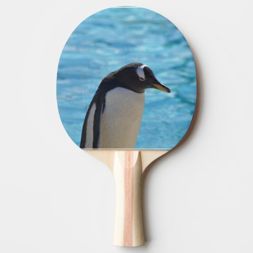 Cute Penguin Ping Pong Paddle