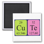 Cute periodic table name magnet