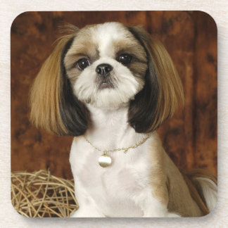 Cute Pet Animal Beverage Coaster