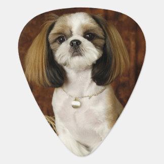 Cute Pet Animal Guitar Pick