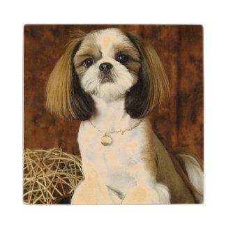 Cute Pet Animal Wood Coaster