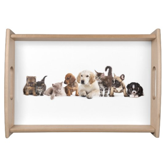 Cute Pet Panorama Serving Tray