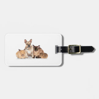 Cute Pets Animal Lovers Travel Luggage Tag