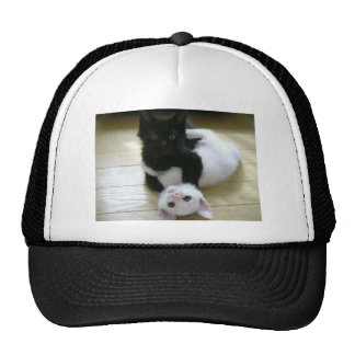 Cute pic of black and white kittens mesh hat