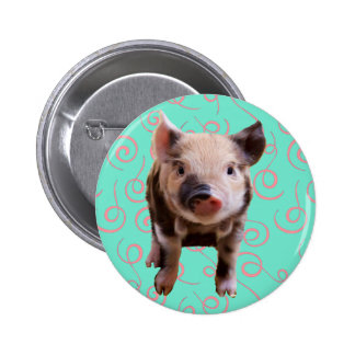 Cute Pig - Blue Pink Swirls Pinback Button