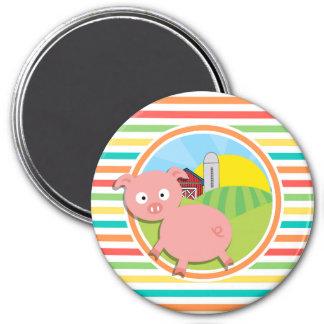 Cute Pig Bright Rainbow Stripes Fridge Magnets
