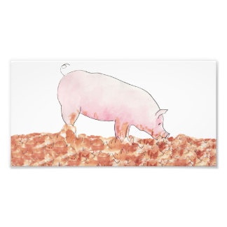 Cute Pig in Mud Funny Watercolour Animal Art Photo Print