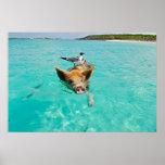 Cute pig swimming in water