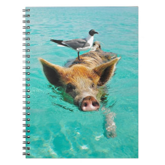 Cute pig swimming in water notebooks