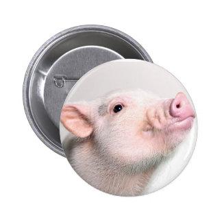 Cute Piggy Button