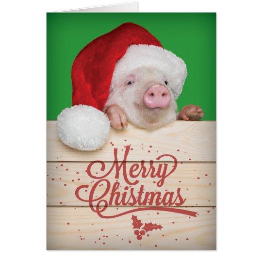 Cute Piggy Pudding Christmas Pig in Santa Hat