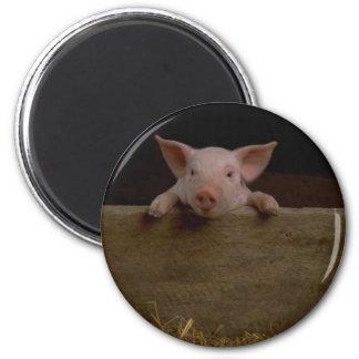 Cute Piglet 6 Cm Round Magnet