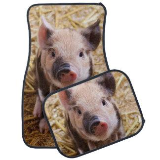 Cute piglet car mat