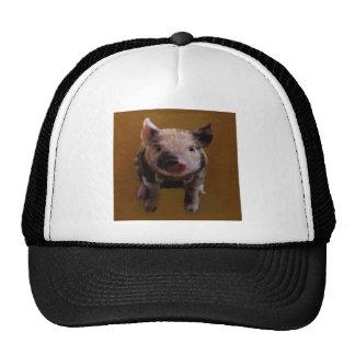Cute piglet trucker hat