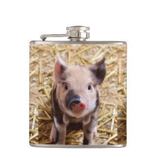 Cute Piglet Hip Flask