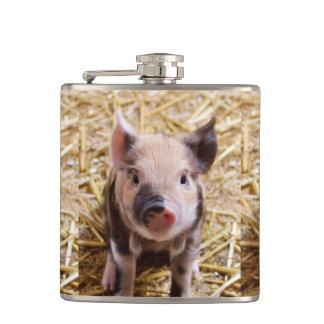 Cute Piglet Hip Flasks