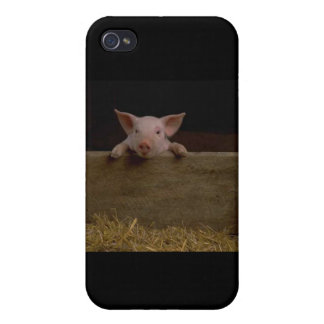 Cute Piglet iPhone 4/4S Cover