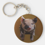 Cute piglet keychain