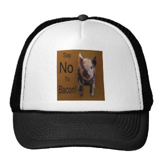 "Cute Piglet ""Say No To Bacon"" Hat"