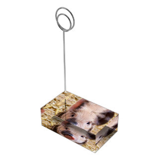 Cute Piglet Table Card Holder