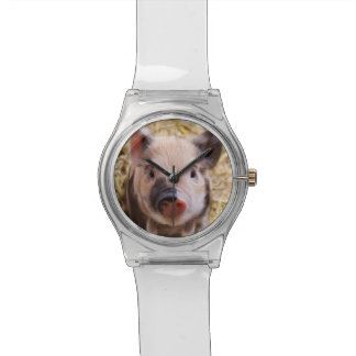Cute Piglet Watch