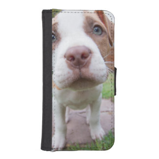 cute pit bull dog brown nose close iPhone SE/5/5s wallet case