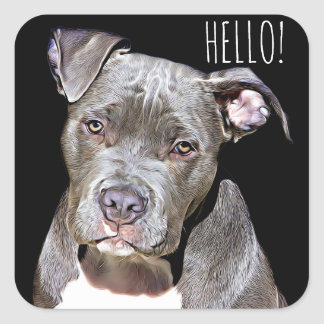 Cute Pit Bull Dog HELLO Stickers