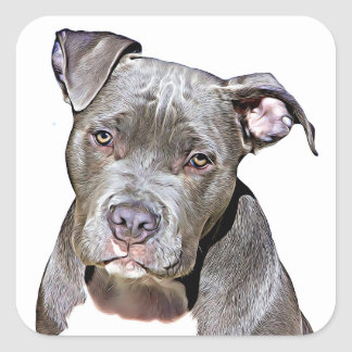 Cute Pit Bull Dog Stickers