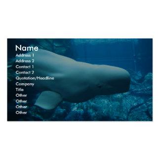 Cute Playful Beluga Whale In Aquarium At Georgia Business Cards
