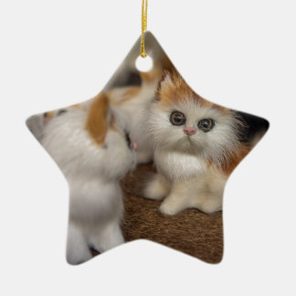 Cute Plushy Kittens Ceramic Star Decoration