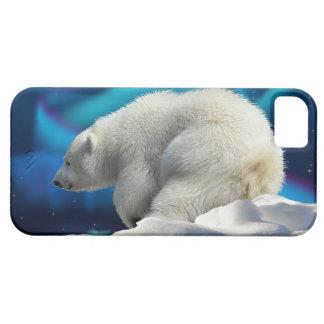 Cute Polar Bear Cub & Aurora iPhone 5 Case