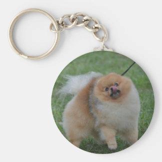 Cute Pomeranian Keychain