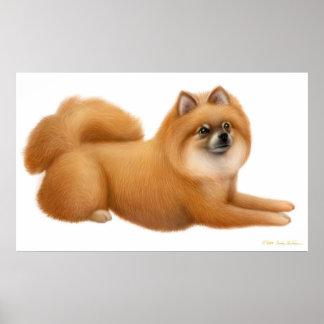 Cute Pomeranian Puppy Print