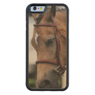 Cute Pony Carved® Maple iPhone 6 Bumper Case