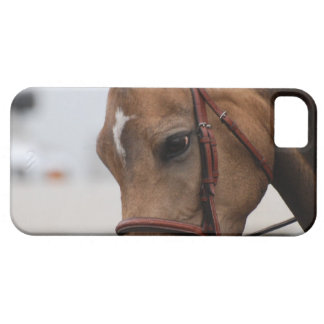Cute Pony iPhone 5 Covers