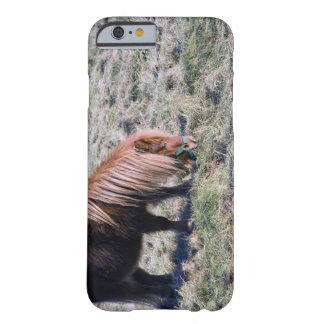 Cute pony grazing on the paddock. iPhone 6 case